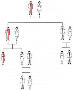 ereditarietà